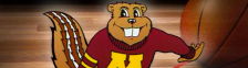 gophers basketball