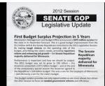 Senate GOP flyer