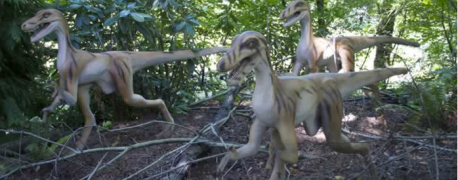 Explore Minnesota - Dinosaurs coming to Minnesota Zoo