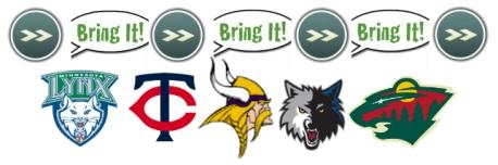 Bring-It-Vikings-Center