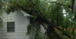 Storm damage Bemidji