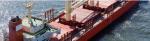 Cargill ocean transport