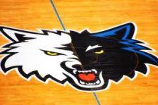 Timberwolves Basketball court
