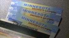 110831071546_drivers_licenses