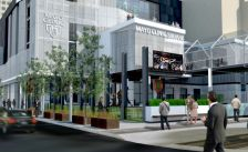 Mayo clinic square block e timberwolves sized down