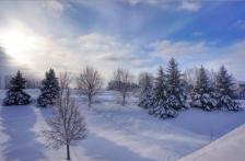 minnesota winter GREEN
