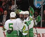 edina hockey team-green