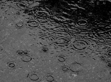 rain-weather-1 (green)