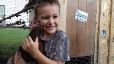 atwater-chicken-killed (west central tribune photo)