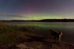 northern lights with dog via twitter veterantraveler