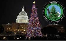 Capitol tree and logo
