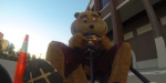 Goldy on go-cart