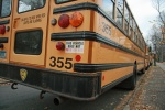 bus busses school kids transportation green
