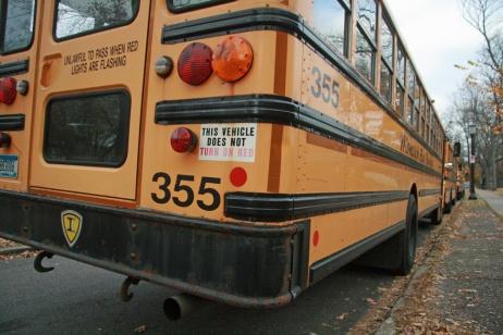 bus busses school kids transportation green