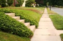 Sidewalk on a residential street.
