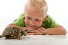 Boy with a pet turtle