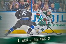 Wild vs. Tampa Bay Lightning Nov. 22, 2014.