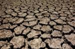California drought  Lake San Antonio