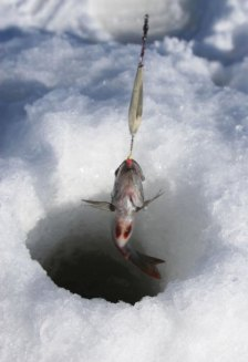 icefishinghole