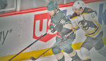 Wild-Bruins (Twitter Linked) 2014-12-17 at 9.51.39 PM
