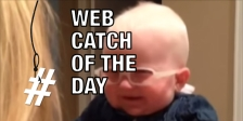 baby-web-catch-of-the-day