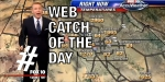 glitchy weather map meteorologist web catch overlay