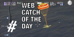 plane-parachute-webcatch2
