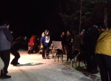 ryan anderson beargrease sled dog marathon win 2015
