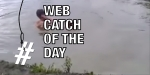 web-catch-of-the-day-dog-saves-man