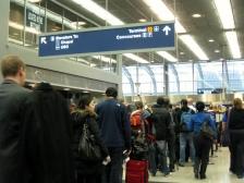 ohare airport chicago rose trinh