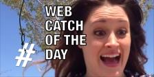 Web catch 0218
