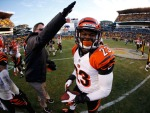 Terence Newman, Bengals