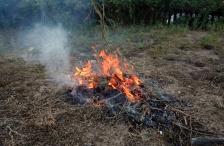 iStock_garden-fire