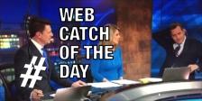 Web Catch