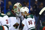 Minnesota Wild, St. Louis Blues