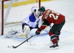 The Minnesota Wild and St. Louis blues open their playoff series on Thursday in St. Louis.