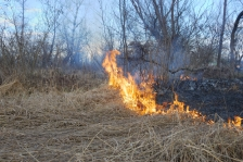 I STOCK OK TO REUSE Fire grass fire wildfire