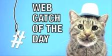 Lowe's Web Catch 04 01 2015