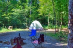 Minnesota-state-park-camping