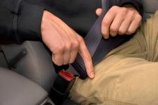 seat_belt_seatbelt