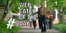 Boulevard Web Catch