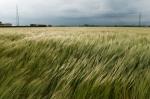istock_windy-storm-wind
