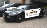 st.-paul-police-car