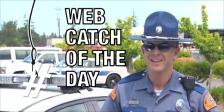 Web Catch 06 15 2015