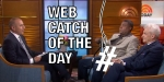 Web Catch