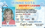 mn-voided-license
