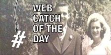 Web Catch 07 01 2015