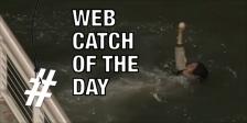 Web catch 0711