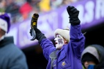 MINNEAPOLIS, MN - DECEMBER 28:  A fan cheers during the game between the Chicago Bears and Minnesota Vikings on December 28, 2014 at TCF Bank Stadium in Minneapolis, Minnesota. (Photo by Adam Bettcher/Getty Images)