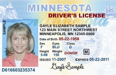 Minnesota driver's license, sample